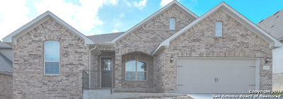 Bexar County Single Family Home For Sale: 13532 Falls Summit
