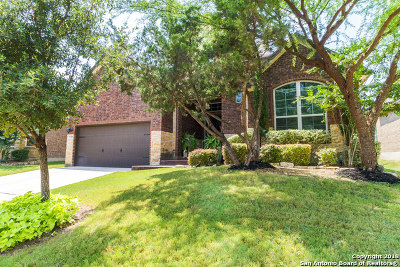 Helotes Single Family Home For Sale: 9738 Helotes Hl