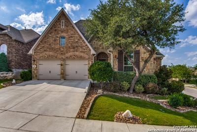 San Antonio Single Family Home For Sale: 3811 Palma Mesa