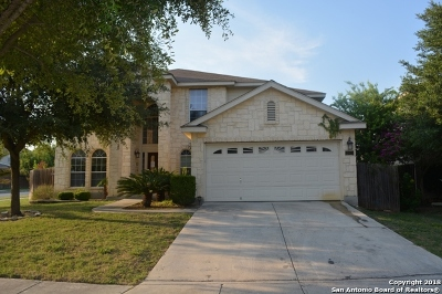 Bexar County, Comal County, Guadalupe County Single Family Home Price Change: 10935 Palomino Bend