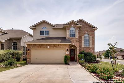 San Antonio Single Family Home For Sale: 822 Caprese Ln