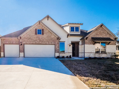 Kendall County Single Family Home For Sale: 223 Branson Falls