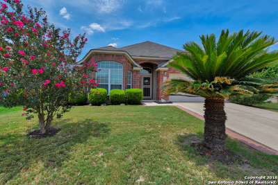 Helotes Single Family Home For Sale: 13113 Mystic Saddle