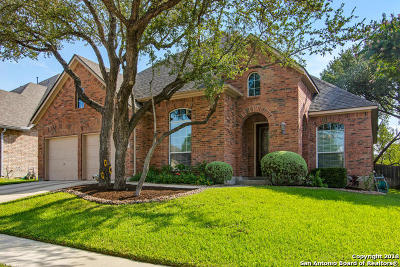 Helotes Single Family Home For Sale: 15834 Hachita Blanco