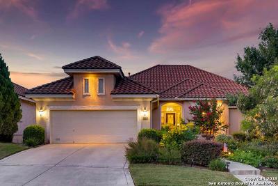 San Antonio Single Family Home For Sale: 219 Verbena Hill
