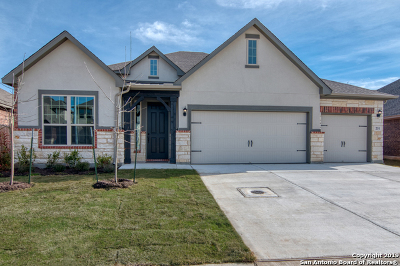 Woods Of Boerne Single Family Home For Sale: 231 Woods Of Boerne Blvd