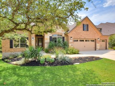 Boerne Single Family Home For Sale: 28007 Sonoma Ambre