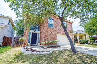 Helotes Single Family Home For Sale: 13619 Sonora Blf