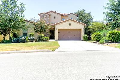 San Antonio Single Family Home For Sale: 22519 Viajes