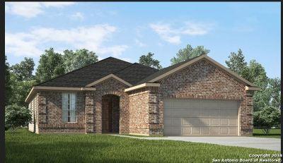 San Antonio Single Family Home Price Change: 5058 Segovia Way
