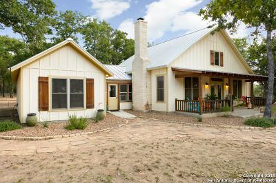 Fredericksburg Single Family Home For Sale: 535 Sandy Ln