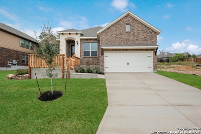 Bexar County Single Family Home For Sale: 29014 Gooseberry