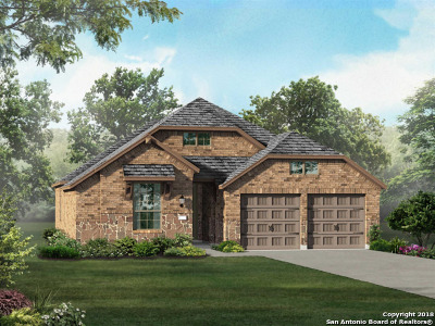 Kendall County Single Family Home For Sale: 141 Boulder Creek