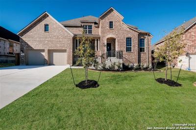 San Antonio Single Family Home For Sale: 12107 Buckner Ridge