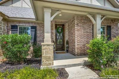 Boerne Single Family Home For Sale: 29018 Voges Ave