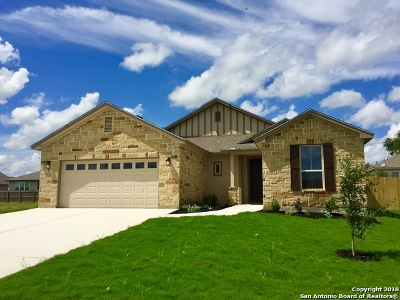 Atascosa County Single Family Home For Sale: 317 Valley Forge