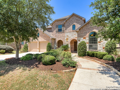San Antonio Single Family Home For Sale: 25623 Lakota Winter