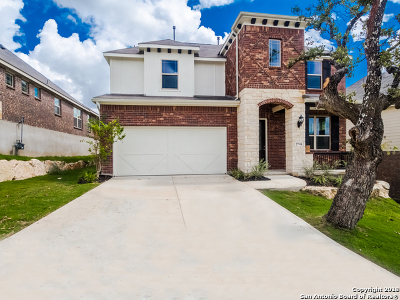 Boerne Single Family Home For Sale: 27914 Dana Creek Dr.