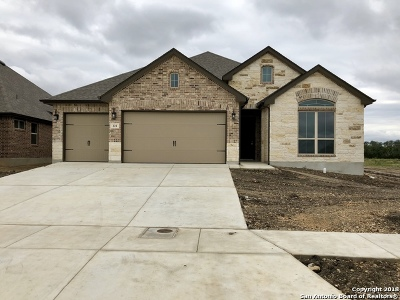 Cibolo Single Family Home For Sale: 221 Wexford