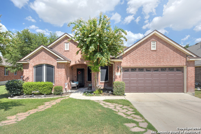 Helotes Single Family Home New: 13014 Five Brooks