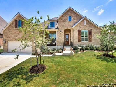 Boerne Single Family Home New: 29026 Porch Swing