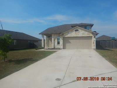 New Braunfels Single Family Home New: 2418 Chad St