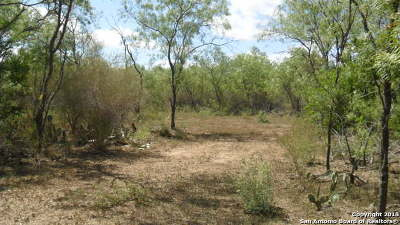 Atascosa County Residential Lots & Land For Sale: 1086 Heickman Rd