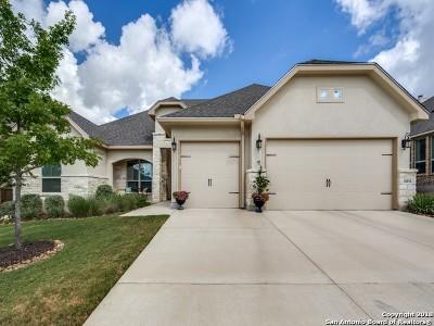 San Antonio Single Family Home For Sale: 26011 Dakota Chief