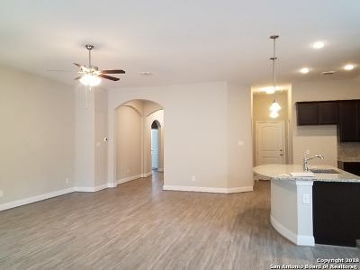 Bexar County Single Family Home For Sale: 4602 Segovia Way