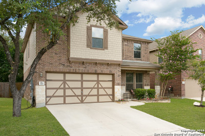 Bexar County Single Family Home For Sale: 819 Trilby