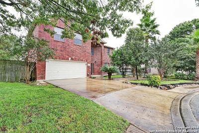 San Antonio TX Single Family Home New: $304,000