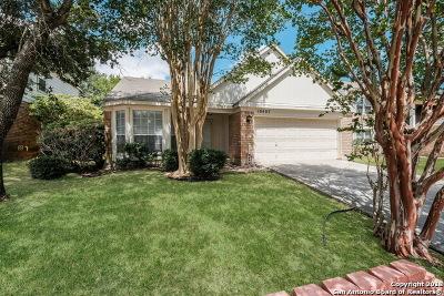Single Family Home New: 10407 Mustang Ridge
