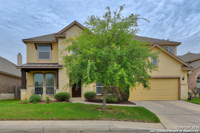 Helotes Single Family Home New: 18023 Antero Mt