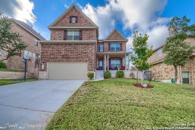 San Antonio Single Family Home New: 710 Viento Pt