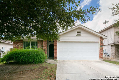 New Braunfels Single Family Home New: 224 San Saba