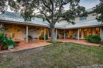 Boerne Single Family Home For Sale: 67 Skyland Dr