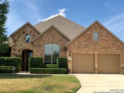 San Antonio Single Family Home New: 21819 Burbank Hl