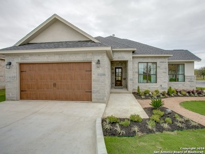 Floresville TX Single Family Home New: $302,700