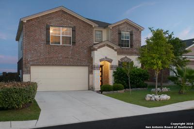 Bexar County Single Family Home New: 12434 Crockett Way