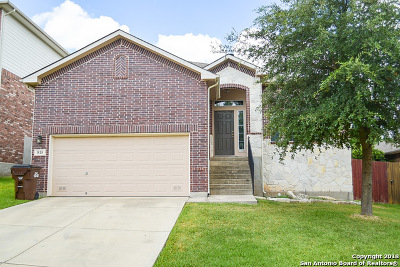 Bexar County Single Family Home New: 815 Point Sunset