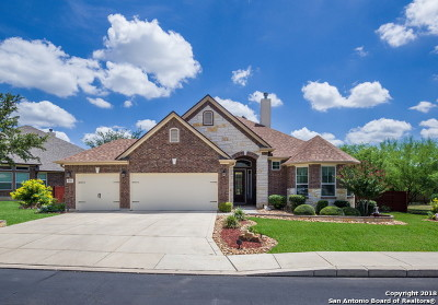 Helotes Single Family Home New: 9711 Helotes Hill