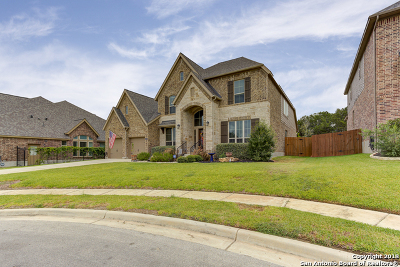 New Braunfels Single Family Home For Sale: 540 Oak Brook