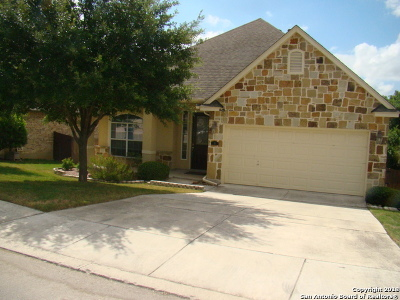 San Antonio Single Family Home New: 14 Palo Duro Canyon
