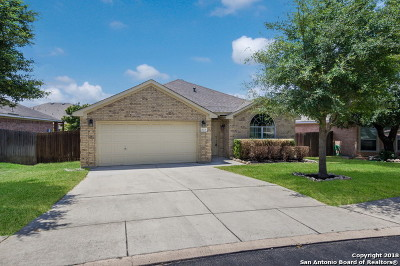 Bexar County Single Family Home New: 413 Point Valley