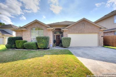San Antonio Single Family Home New: 24802 Wine Rose Path