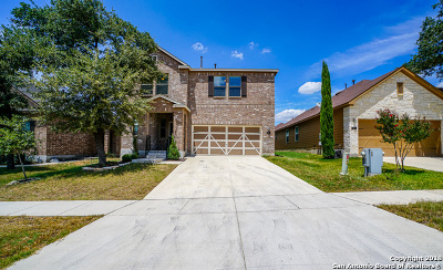 Boerne TX Single Family Home New: $273,000