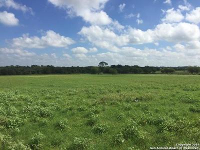 Atascosa County Farm & Ranch For Sale: 00 Tank Hollow Rd.