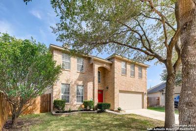 Bexar County Single Family Home New: 11911 Dudleston