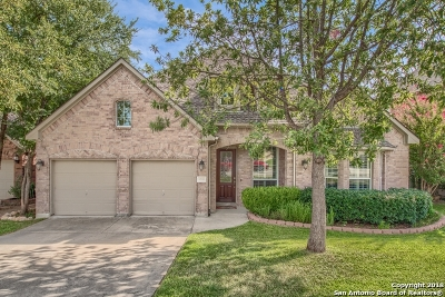 Helotes Single Family Home New: 8710 Anton Chico