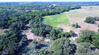 Wilson County Farm & Ranch New: 4204 County Road 444